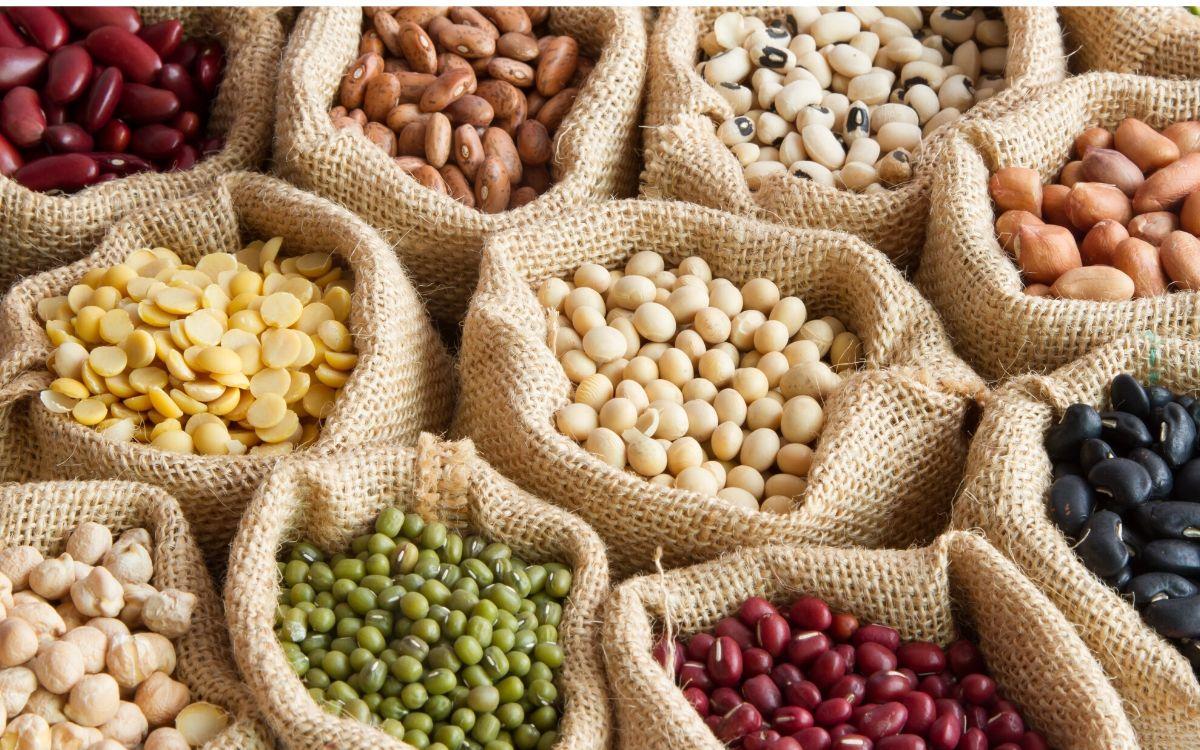 Białka w diecie - najważniejsze informacje